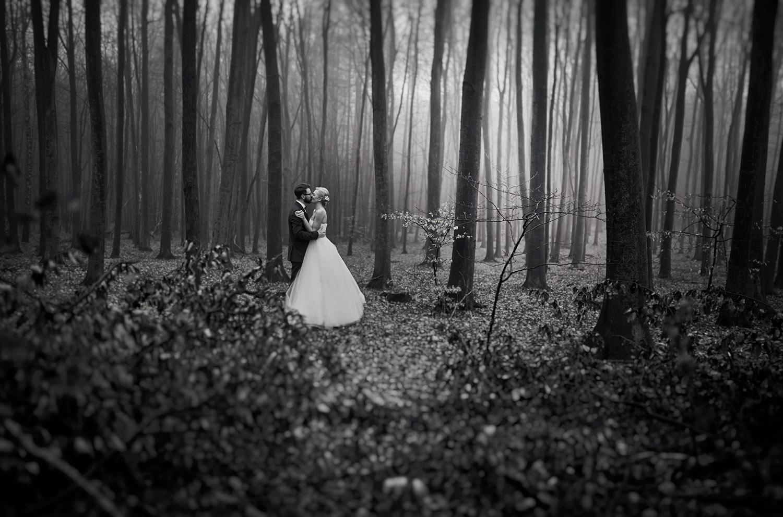 sesja w lesie, jura Krakowsko Częstochowska ,Przybynów, sesja ślubna, Tomasz Konopka ,fotografia ślubna Śląsk